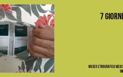 Mostra Personale / Giuseppe Loi / 7 Giorni Senza Pelle